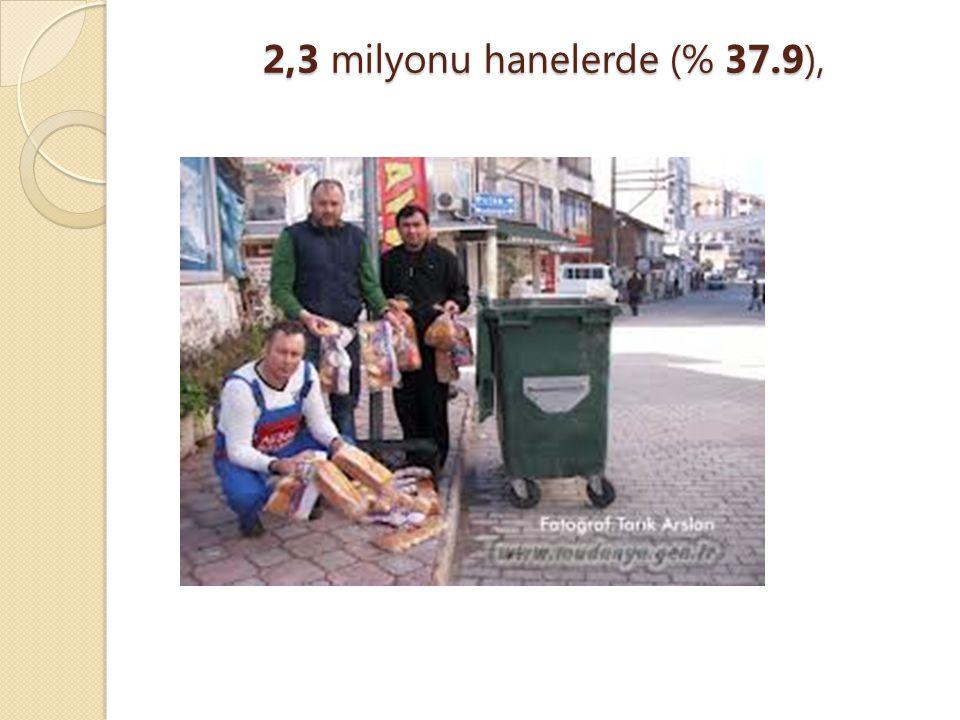 2,3 milyonu hanelerde (% 37.9),