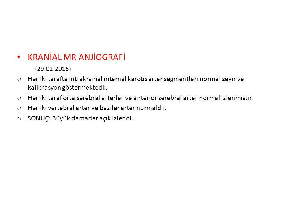 KRANİAL MR ANJİOGRAFİ (29.01.2015)
