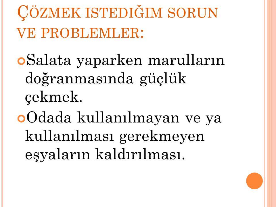 Çözmek istediğim sorun ve problemler: