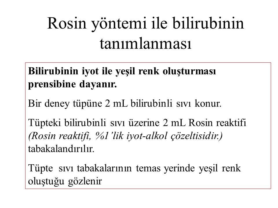 Rosin yöntemi ile bilirubinin tanımlanması