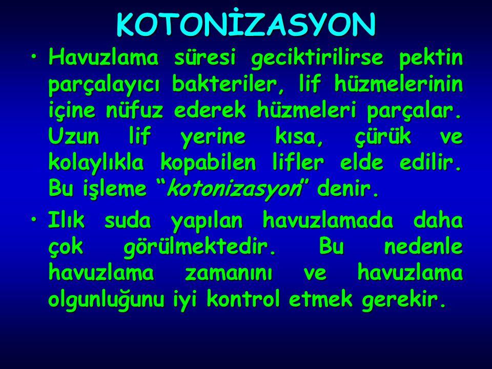 KOTONİZASYON
