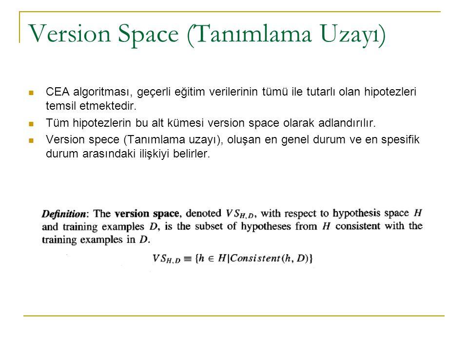 Version Space (Tanımlama Uzayı)