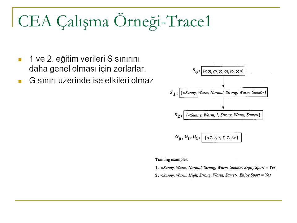 CEA Çalışma Örneği-Trace1