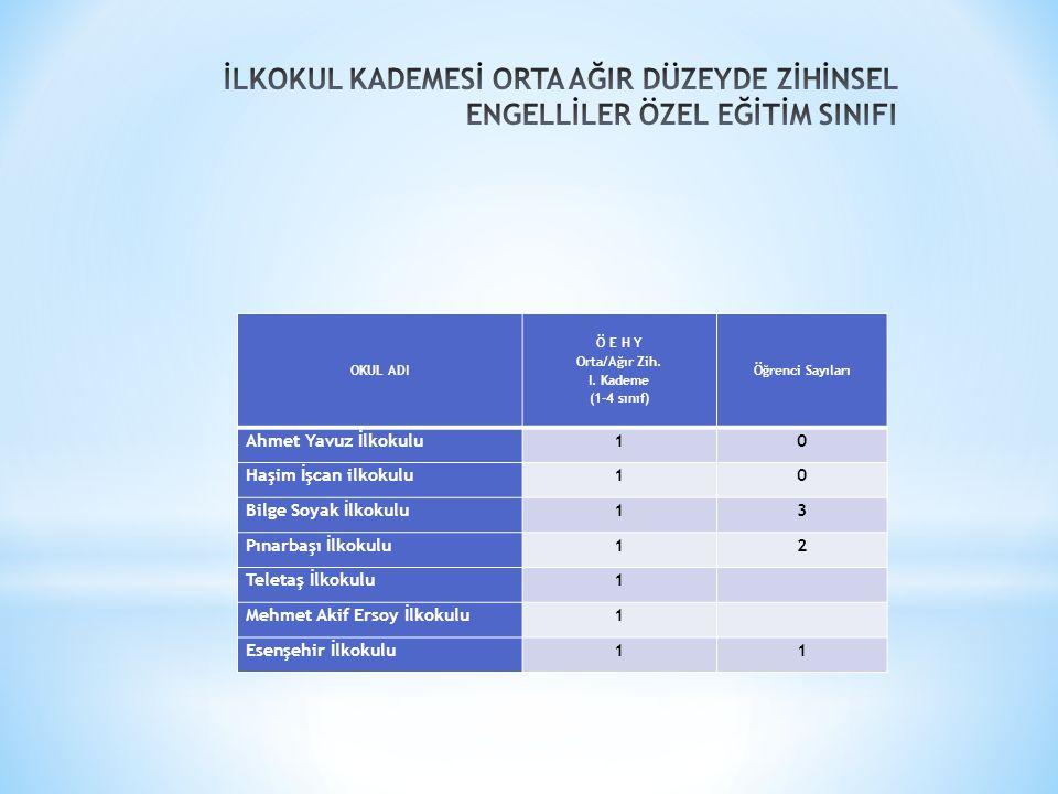 Orta/Ağır Zih. I. Kademe (1-4 sınıf)