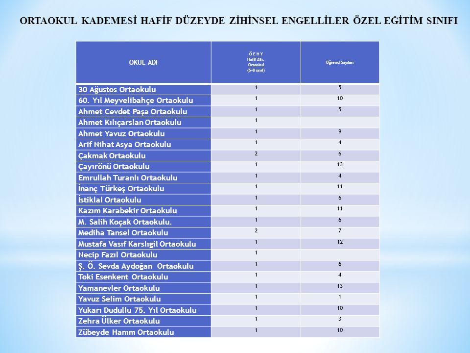 Hafif Zih. Ortaokul (5-8 sınıf)