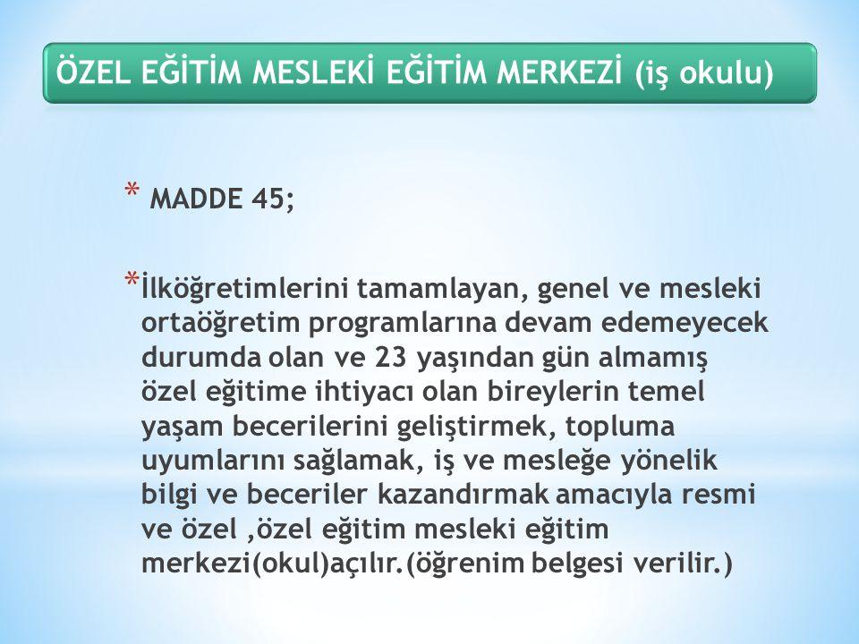 ÖZEL EĞİTİM MESLEKİ EĞİTİM MERKEZİ (iş okulu)