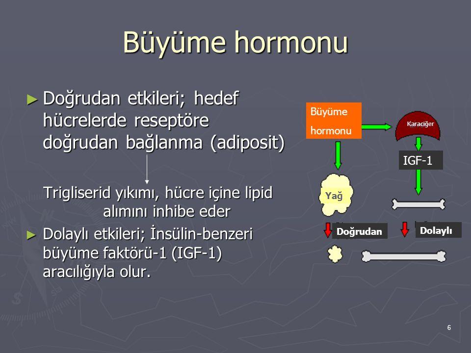 Trigliserid yıkımı, hücre içine lipid alımını inhibe eder