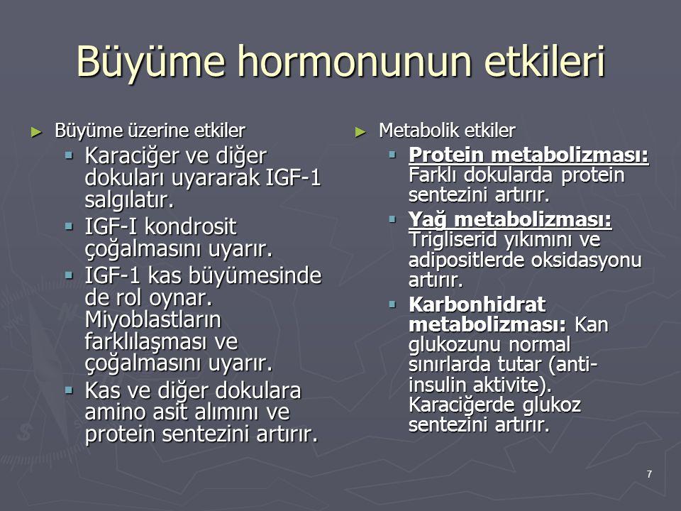 Büyüme hormonunun etkileri