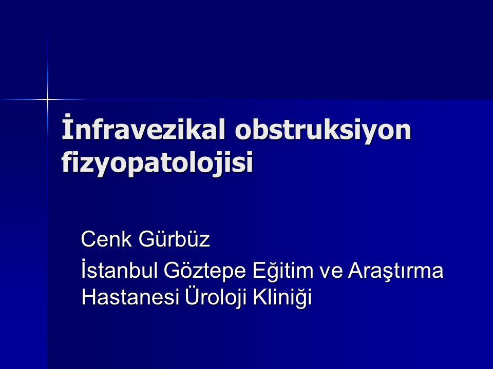 İnfravezikal obstruksiyon fizyopatolojisi
