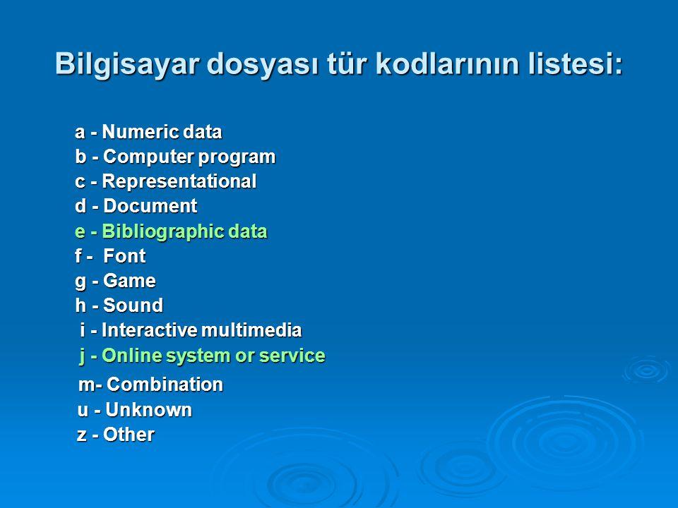 Bilgisayar dosyası tür kodlarının listesi:
