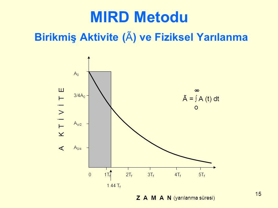 MIRD Metodu Birikmiş Aktivite (Ã) ve Fiziksel Yarılanma