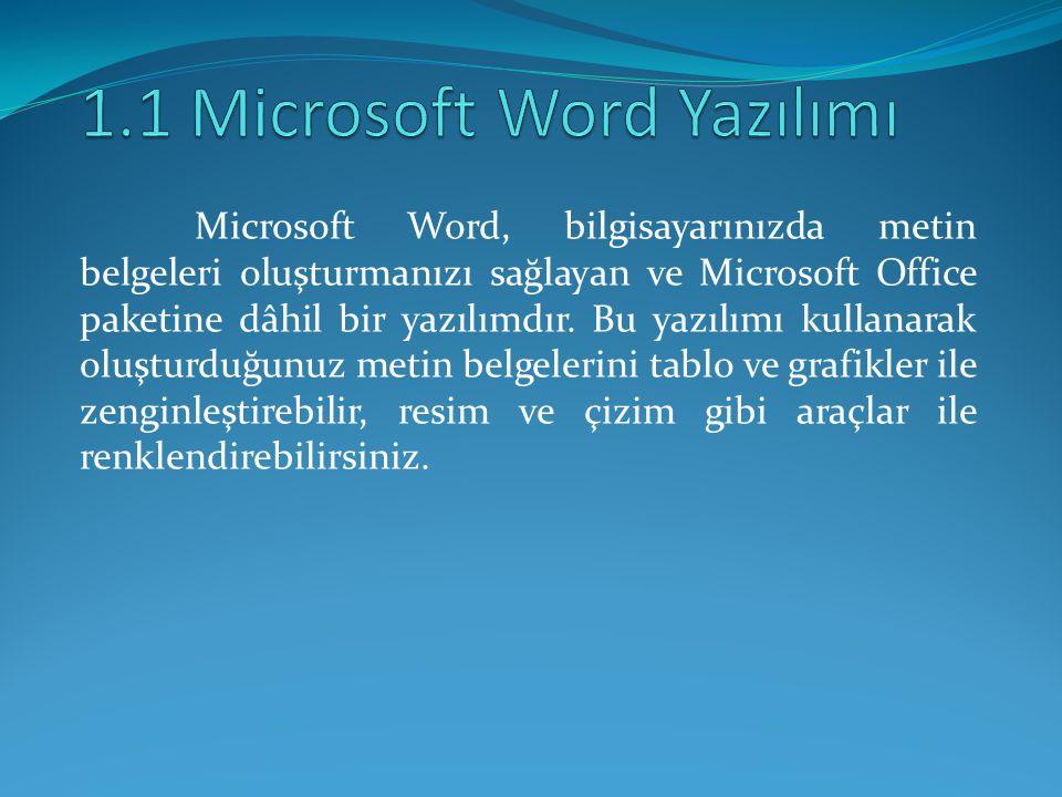 1.1 Microsoft Word Yazılımı