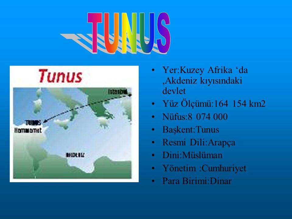 TUNUS Yer:Kuzey Afrika 'da ,Akdeniz kıyısındaki devlet