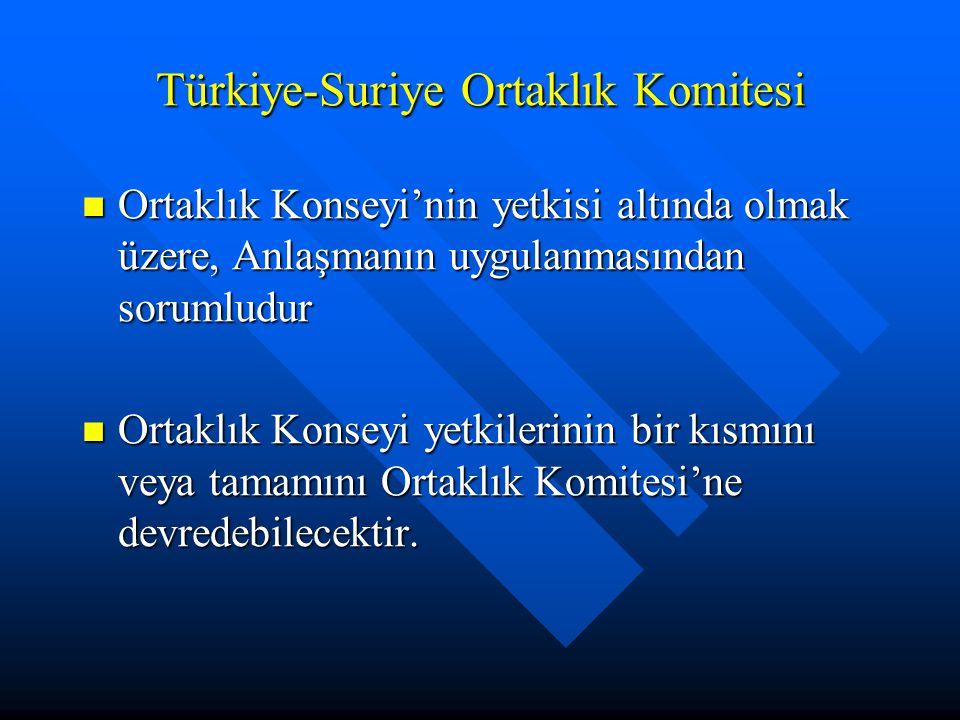 Türkiye-Suriye Ortaklık Komitesi