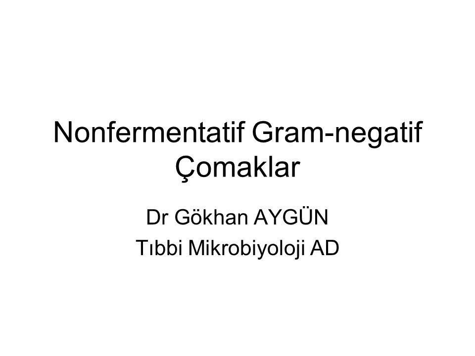 Nonfermentatif Gram-negatif Çomaklar