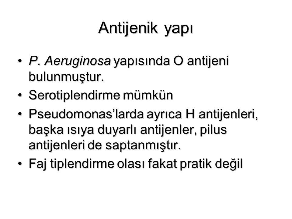 Antijenik yapı P. Aeruginosa yapısında O antijeni bulunmuştur.