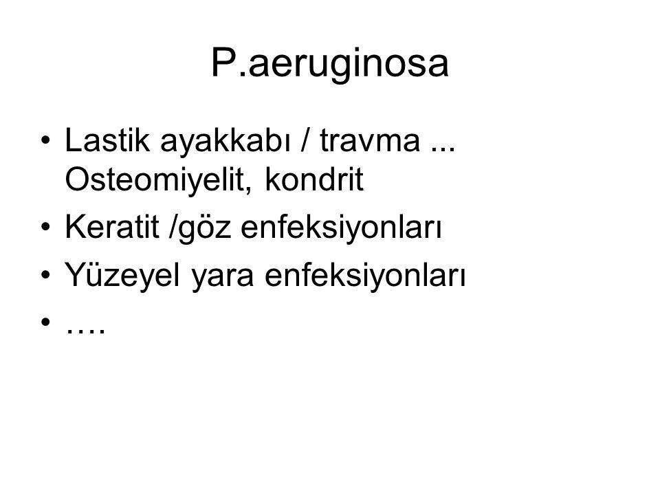 P.aeruginosa Lastik ayakkabı / travma ... Osteomiyelit, kondrit