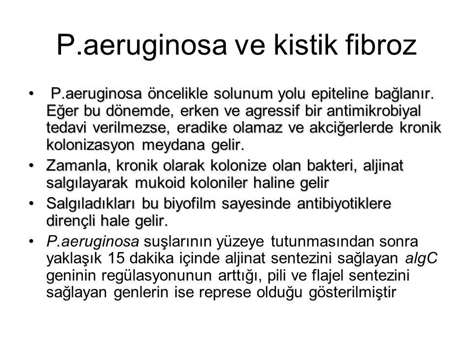 P.aeruginosa ve kistik fibroz