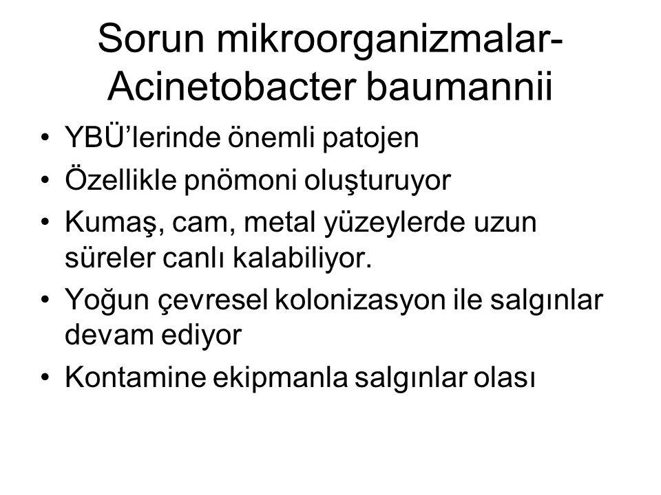 Sorun mikroorganizmalar-Acinetobacter baumannii