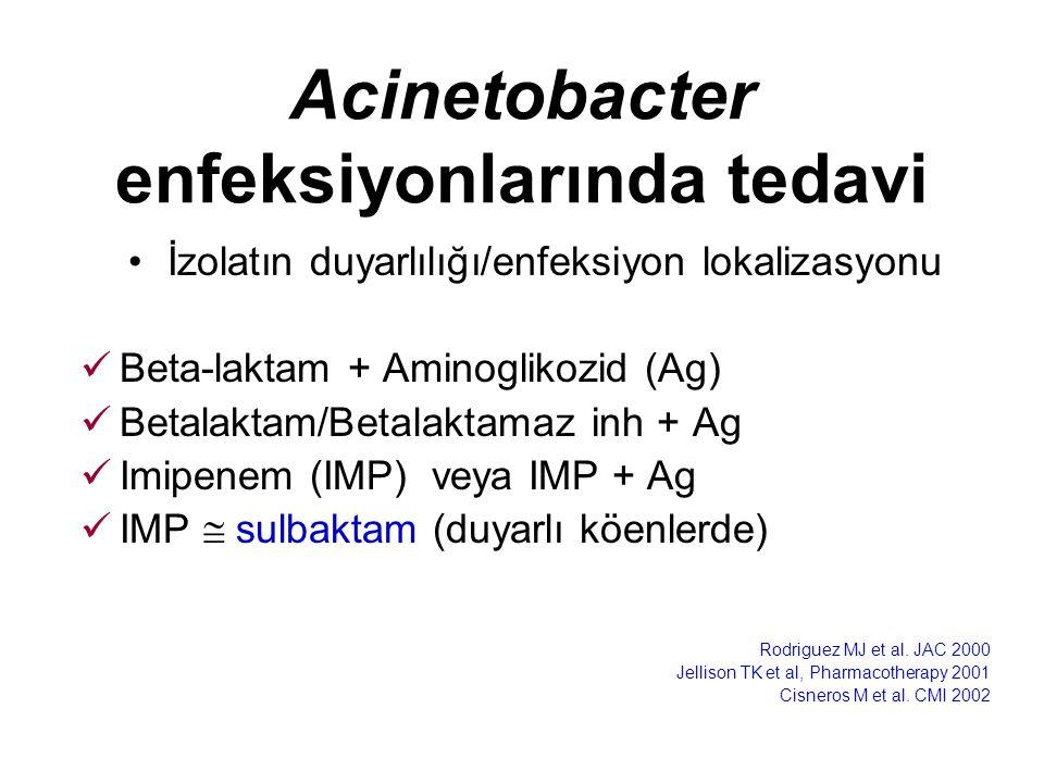 Acinetobacter enfeksiyonlarında tedavi