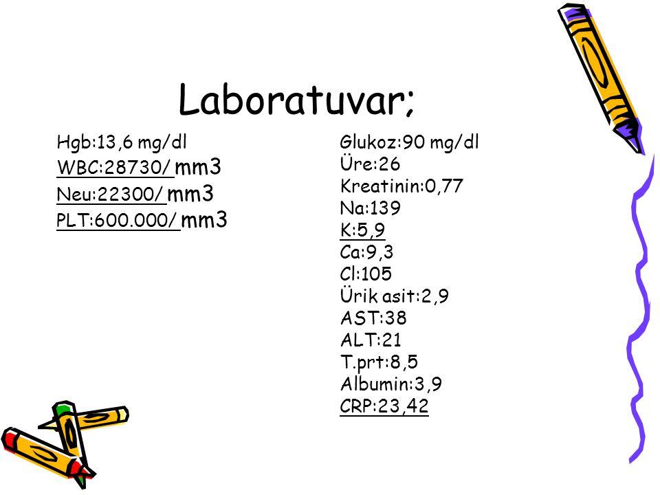 Laboratuvar; Hgb:13,6 mg/dl WBC:28730/ mm3 Neu:22300/ mm3