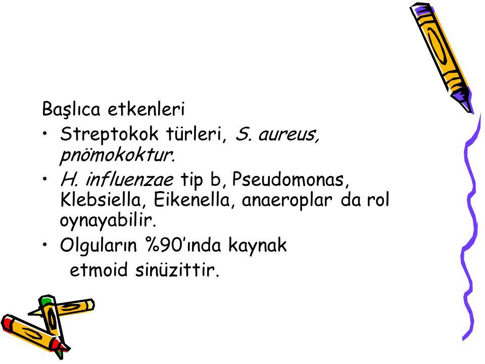Başlıca etkenleri Streptokok türleri, S. aureus, pnömokoktur.