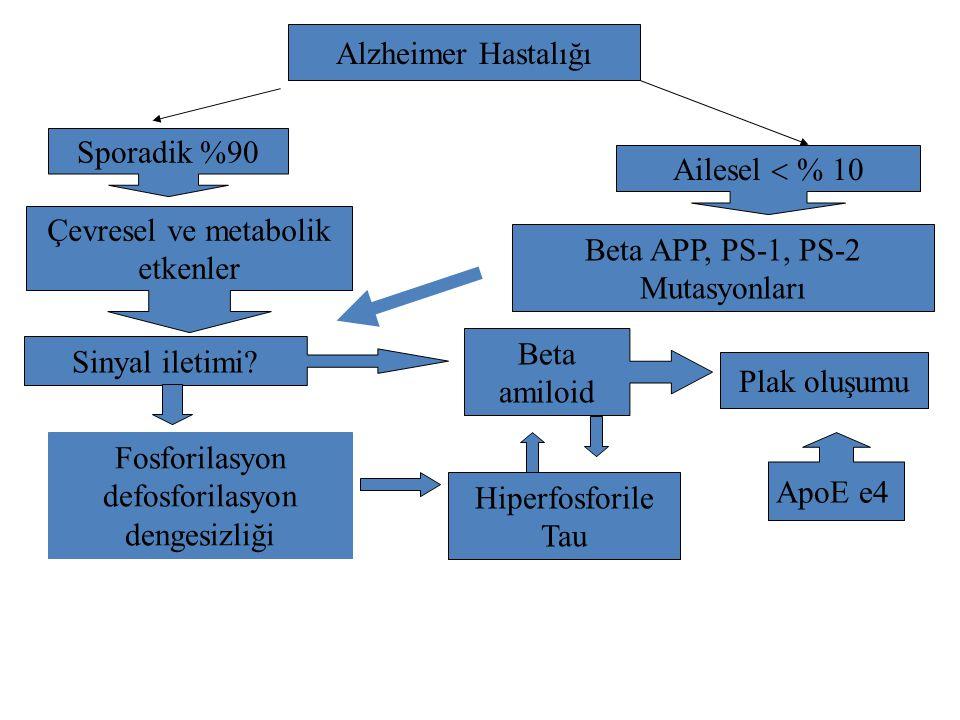 Çevresel ve metabolik etkenler Beta APP, PS-1, PS-2 Mutasyonları