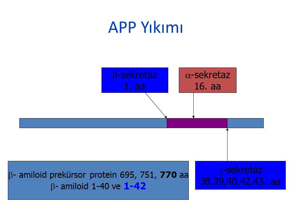 b- amiloid prekürsor protein 695, 751, 770 aa