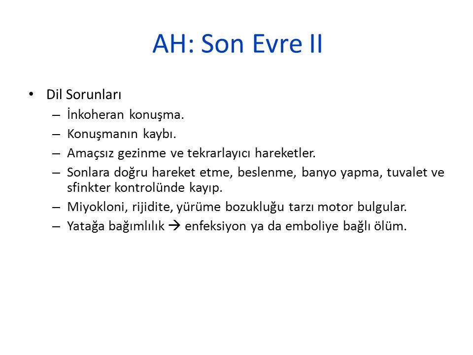 AH: Son Evre II Dil Sorunları İnkoheran konuşma. Konuşmanın kaybı.