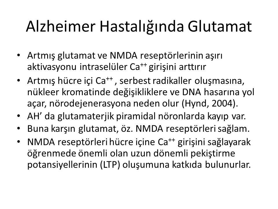Alzheimer Hastalığında Glutamat