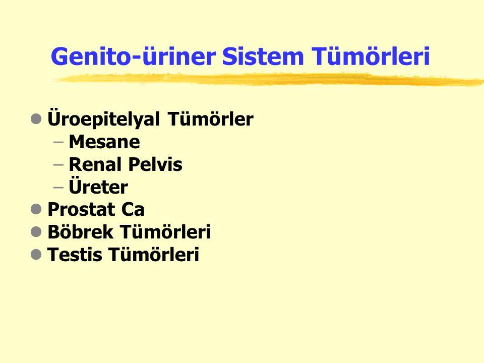 Genito-üriner Sistem Tümörleri
