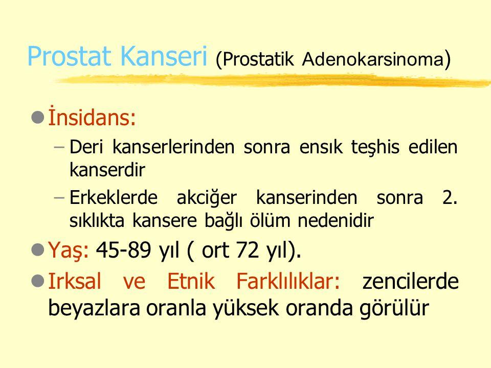 Prostat Kanseri (Prostatik Adenokarsinoma)