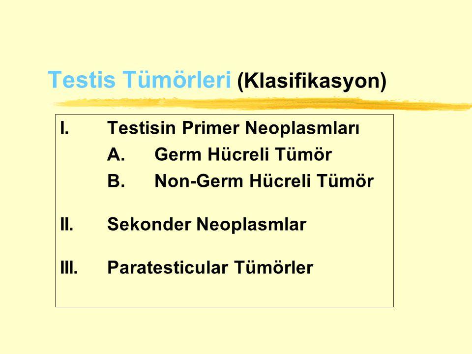Testis Tümörleri (Klasifikasyon)