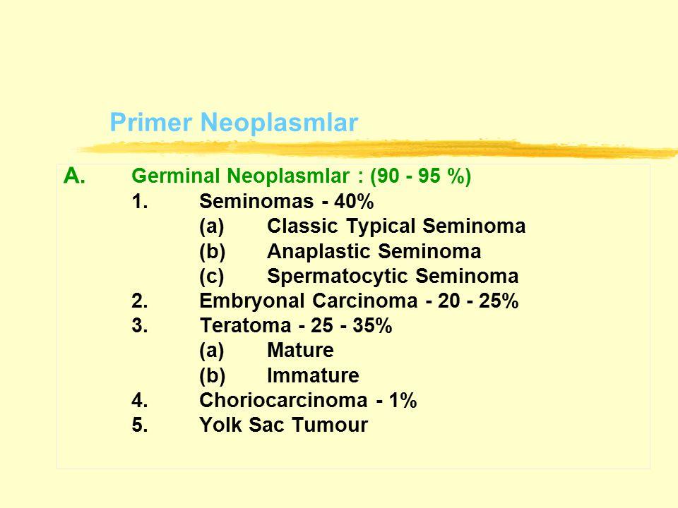 A. Germinal Neoplasmlar : (90 - 95 %)