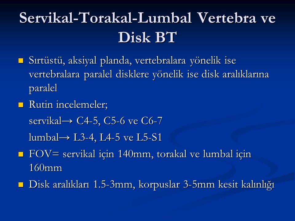 Servikal-Torakal-Lumbal Vertebra ve Disk BT