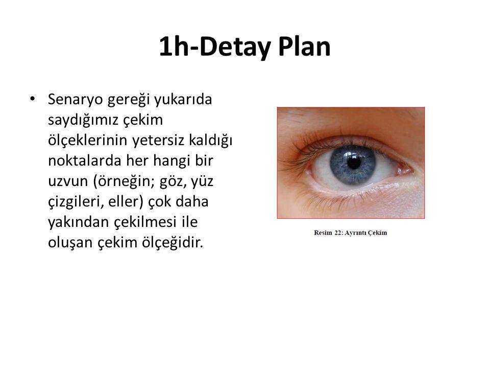 1h-Detay Plan