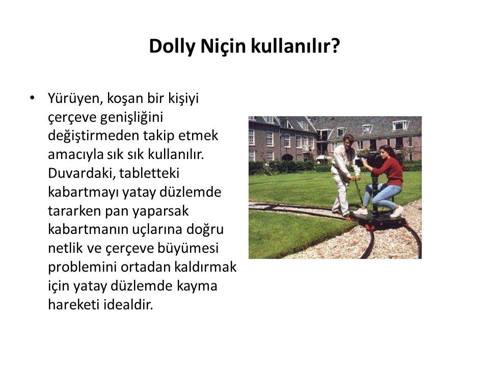 Dolly Niçin kullanılır