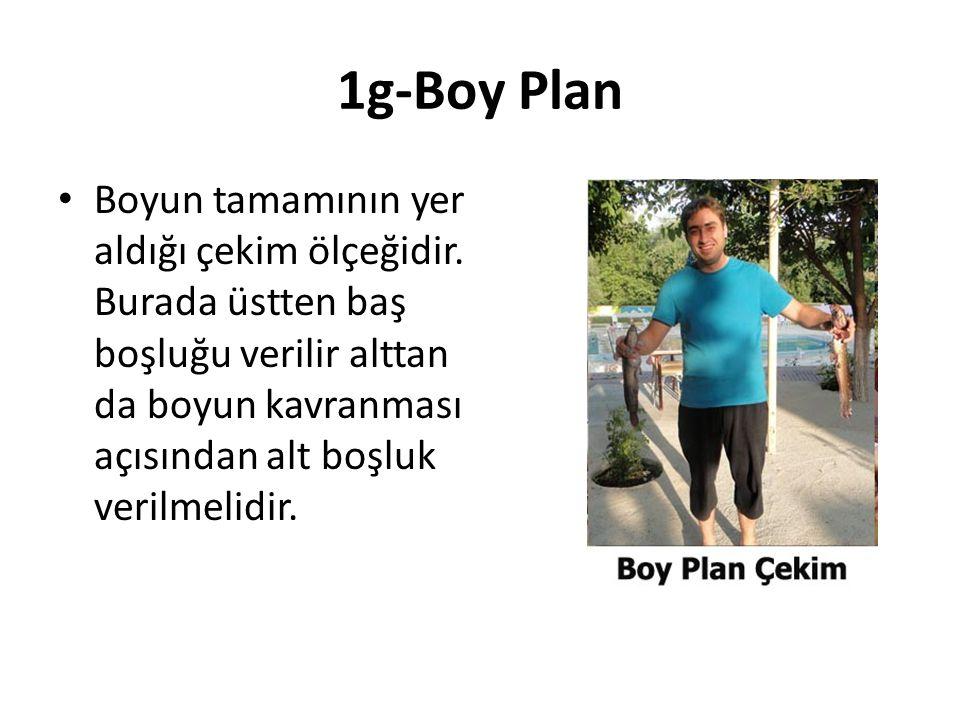 1g-Boy Plan