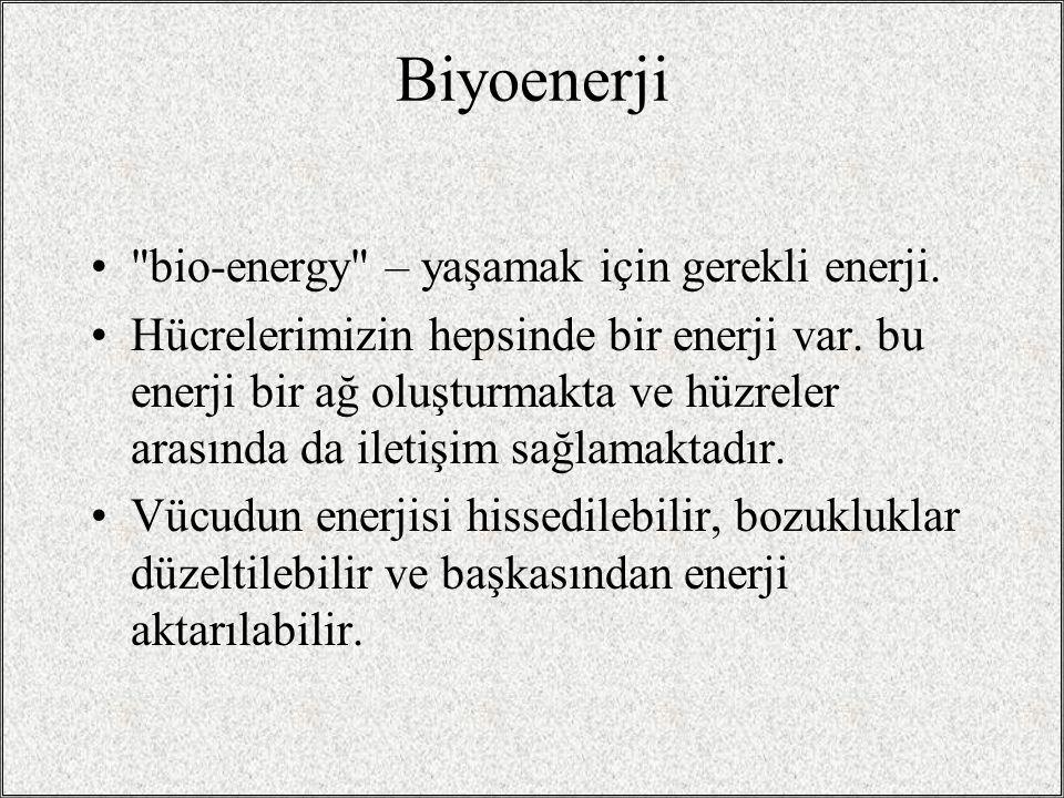 Biyoenerji bio-energy – yaşamak için gerekli enerji.