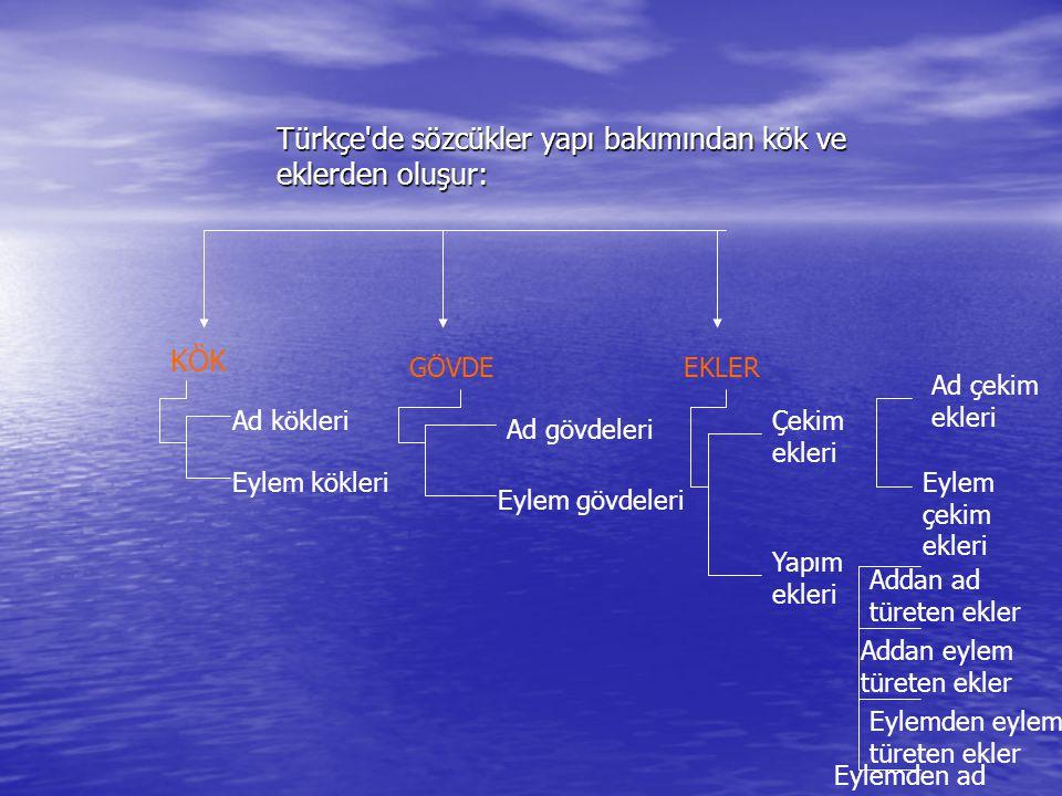 Türkçe de sözcükler yapı bakımından kök ve eklerden oluşur: