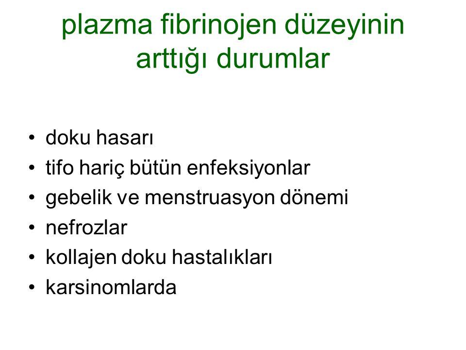 plazma fibrinojen düzeyinin arttığı durumlar