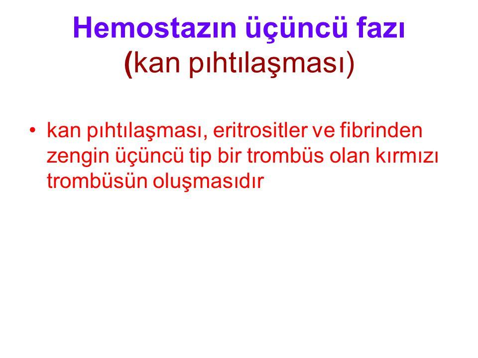 Hemostazın üçüncü fazı (kan pıhtılaşması)