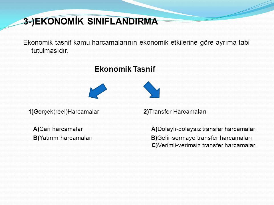 3-)EKONOMİK SINIFLANDIRMA