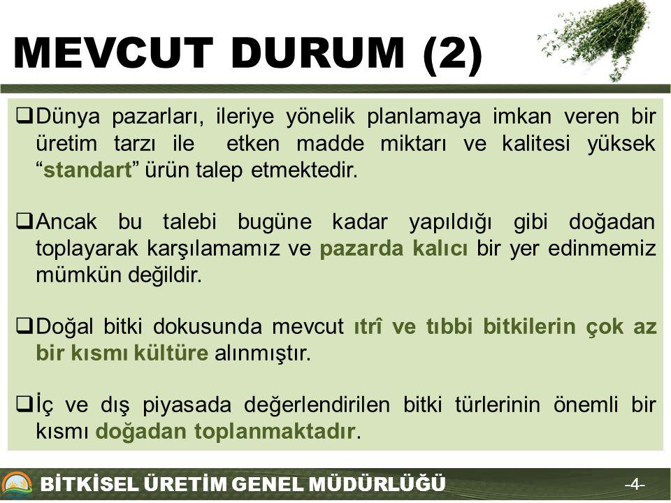 MEVCUT DURUM (2)