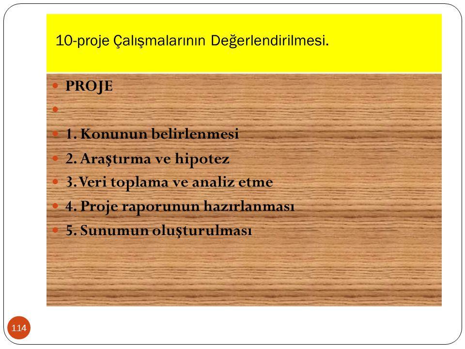10-proje Çalışmalarının Değerlendirilmesi.