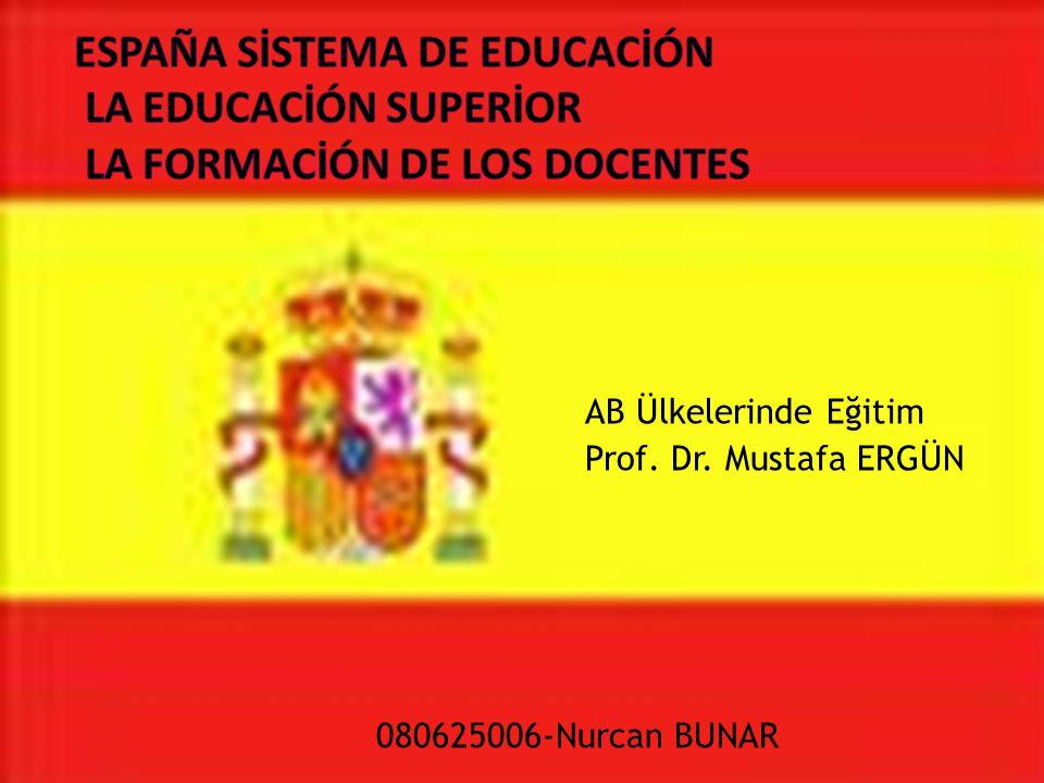 ESPAÑA SİSTEMA DE EDUCACİÓN LA EDUCACİÓN SUPERİOR LA FORMACİÓN DE LOS DOCENTES
