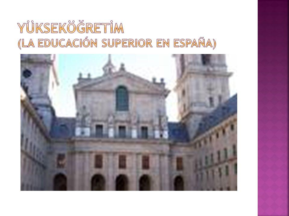 YÜKSEKÖĞRETİM (la educación superior en España)