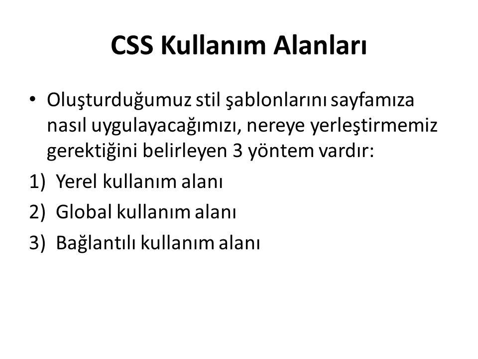 CSS Kullanım Alanları