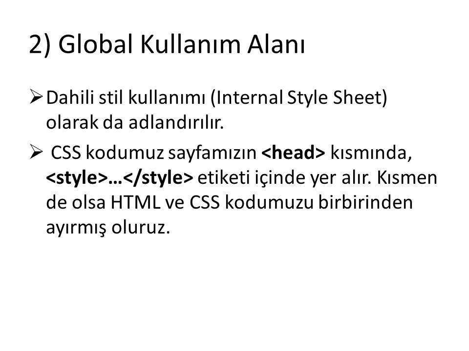 2) Global Kullanım Alanı