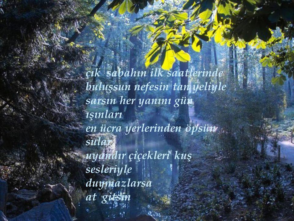 çık sabahın ilk saatlerinde buluşsun nefesin tan yeliyle sarsın her yanını gün ışınları en ücra yerlerinden öpsün sular uyandır çiçekleri kuş sesleriyle duymazlarsa at gitsin